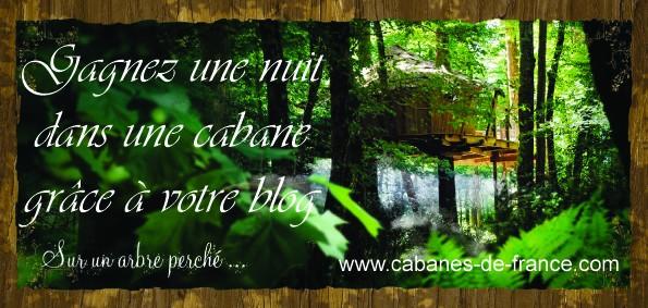 Une nuit dans une cabane... Dans un arbre... dans ELFEEBULATIONS jeu_ca10