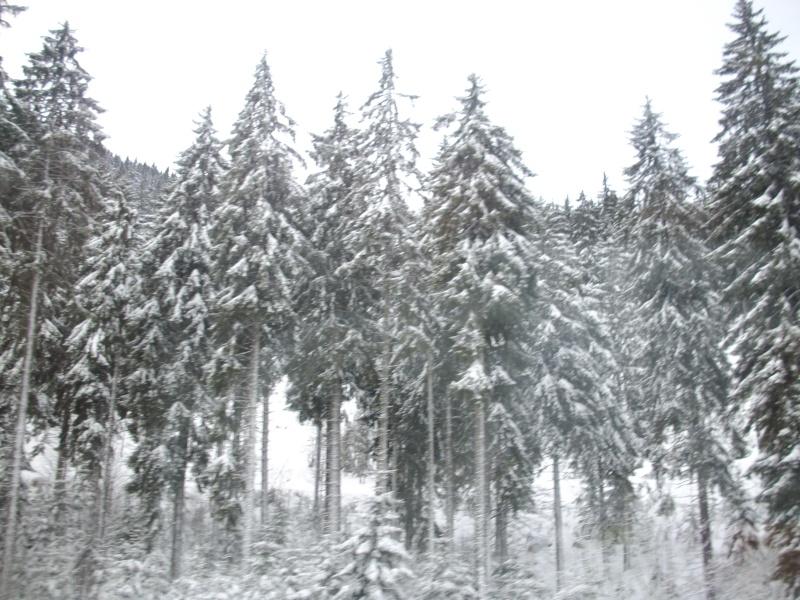 pevision météo neige vosges