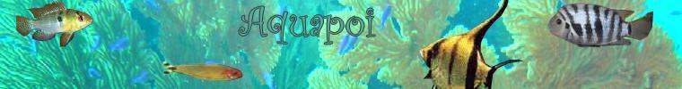 aquapo10.jpg
