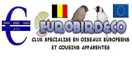 Eurobird and Co