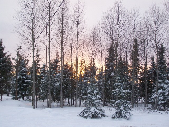 neige10.jpg