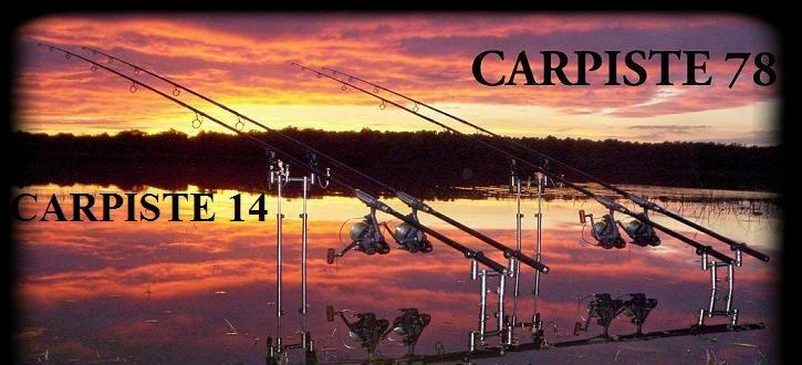 CARPISTE-78-14