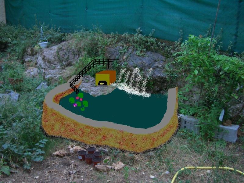 bassin de jardin tortue