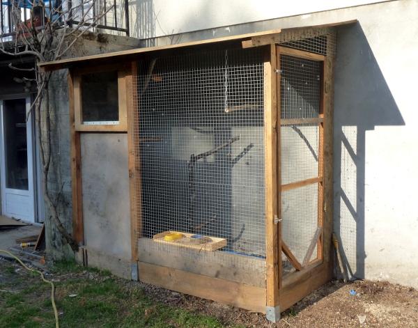 Plans d une voliere exterieure for Oiseaux pour voliere exterieure