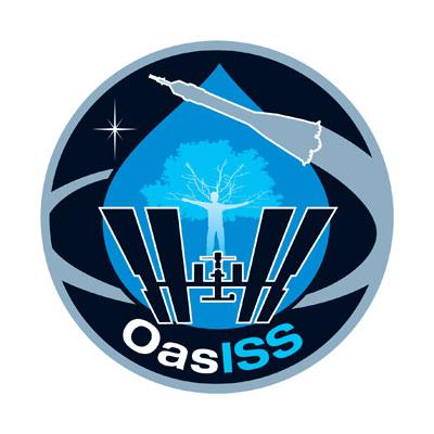 oasiss10.jpg