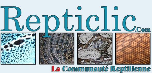 Forum Reptiles Repticlic ''LA'' communaut� Reptilienne