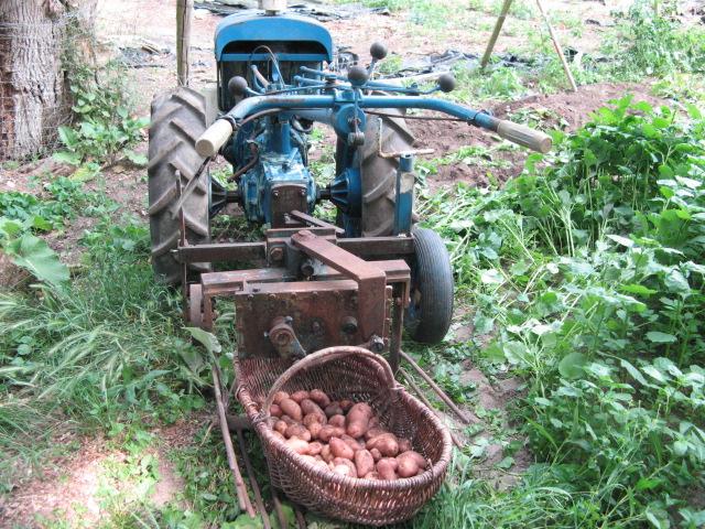 Arrache patates sur pp6d - Arrache pomme de terre ...