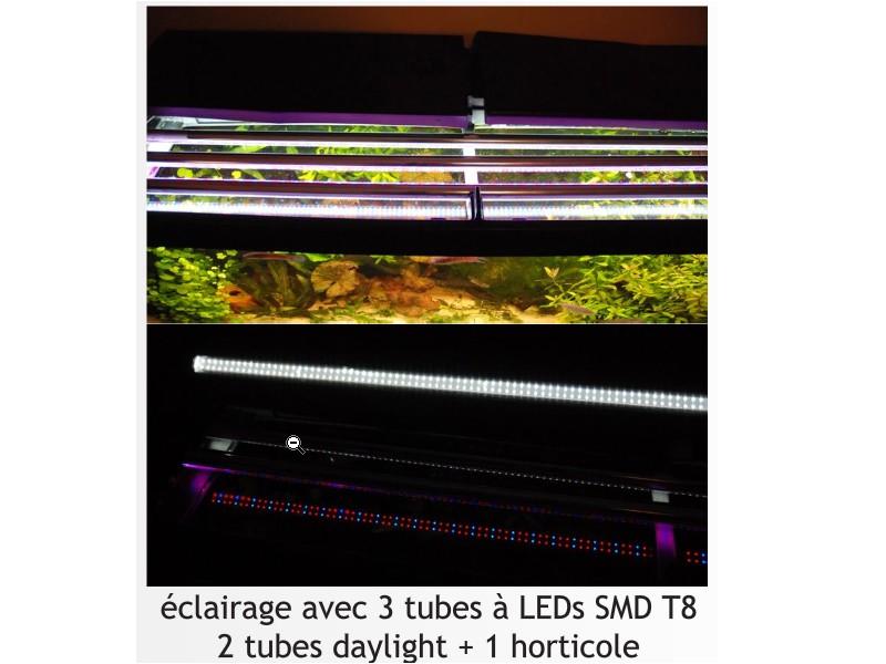 tubes led dans vos aquariums. Black Bedroom Furniture Sets. Home Design Ideas