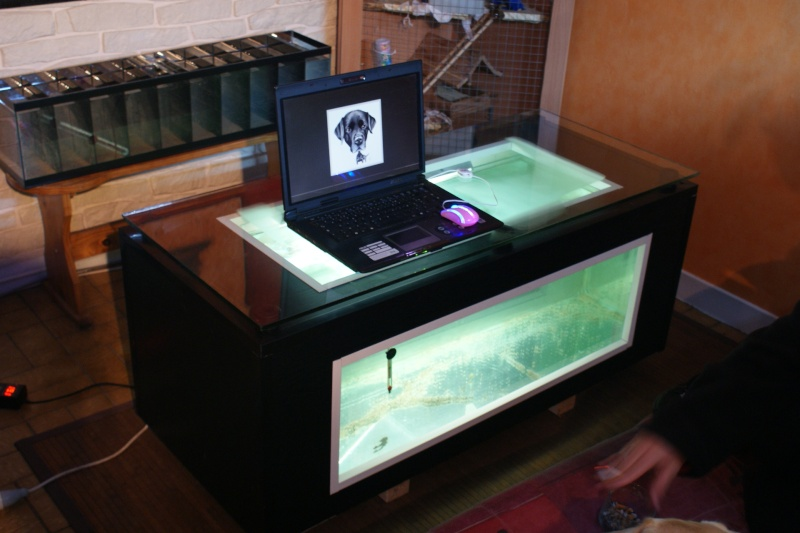 Recherche Table Basse Aquarium Pas Cher – Phaichicom -> Aquarium Table Basse Pas Cher