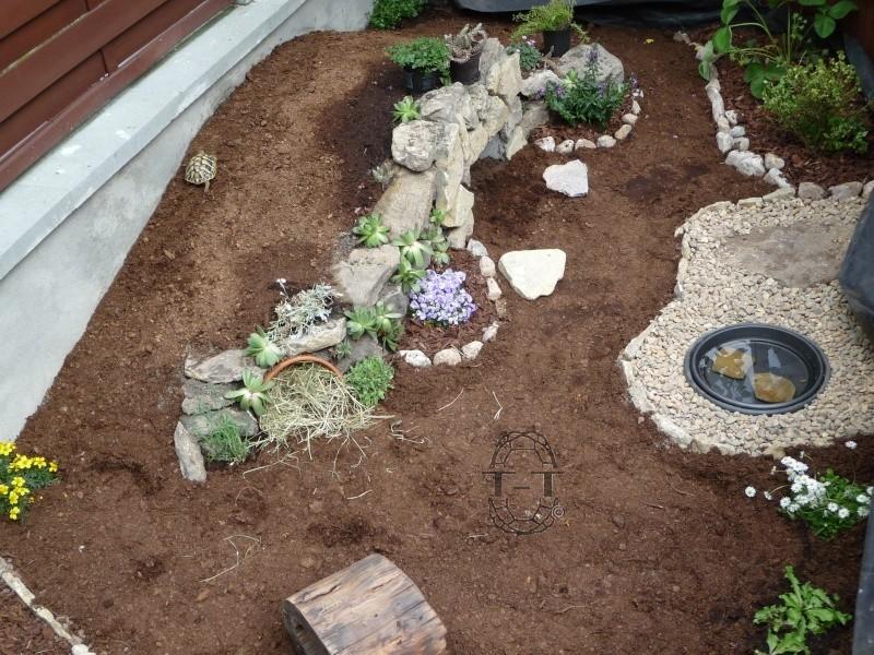 Exemples enclos pour bebes ou juveniles for Avoir une tortue a la maison