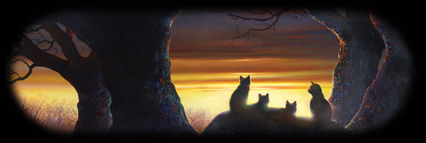Warrior Clan Cats:2