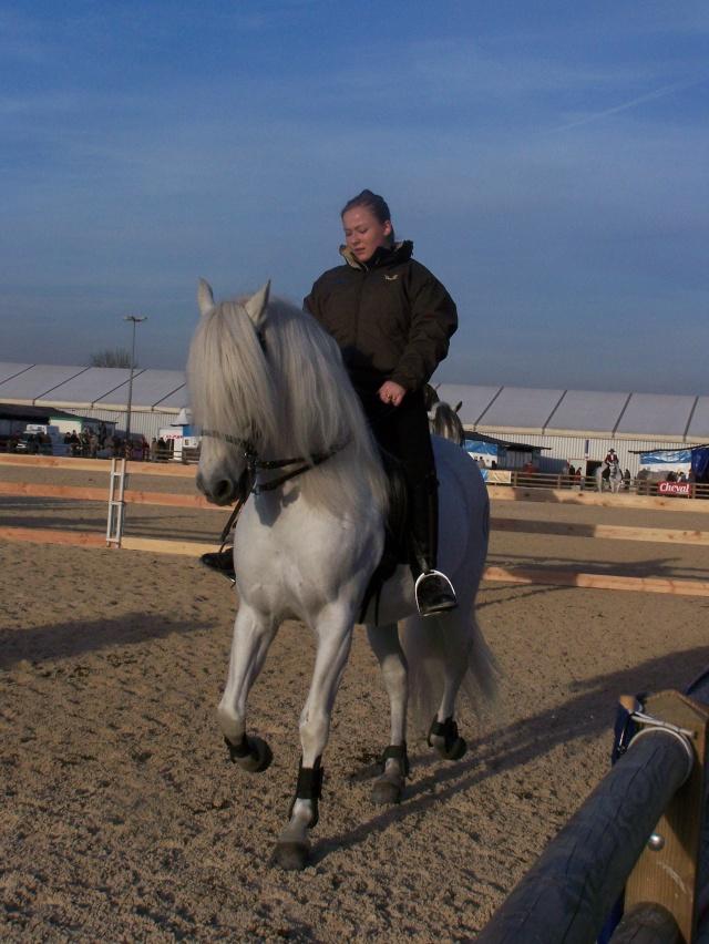Week end a avignon pour salon du cheval et manade page 8 for Salon du cheval a avignon
