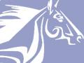 La Baule équitation éthologique