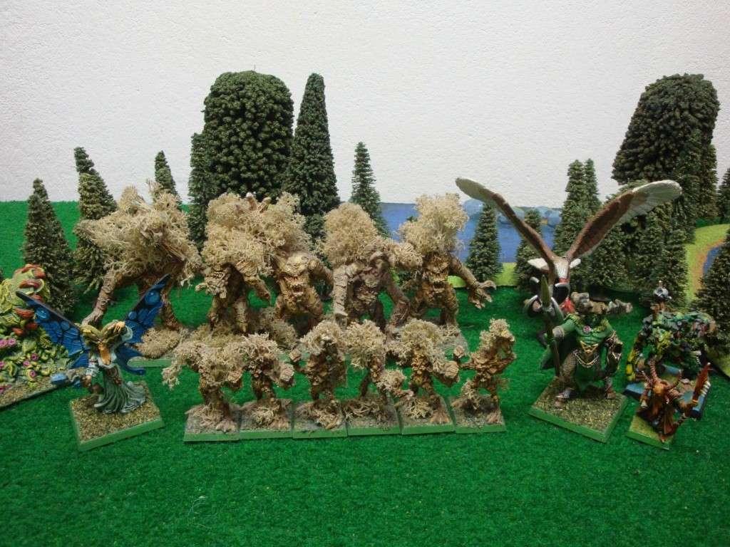 Armée Elfes Sylvains
