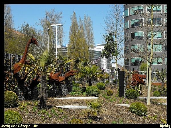 Melvin d photographies archives du blog le jardin des for Le jardin d alix lille