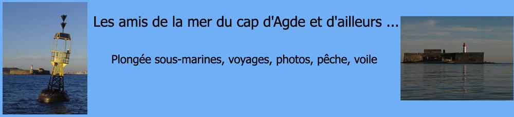 Les amis de la mer du cap d' Agde et d' ailleurs