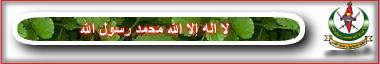 https://i60.servimg.com/u/f60/13/60/02/95/islami10.jpg