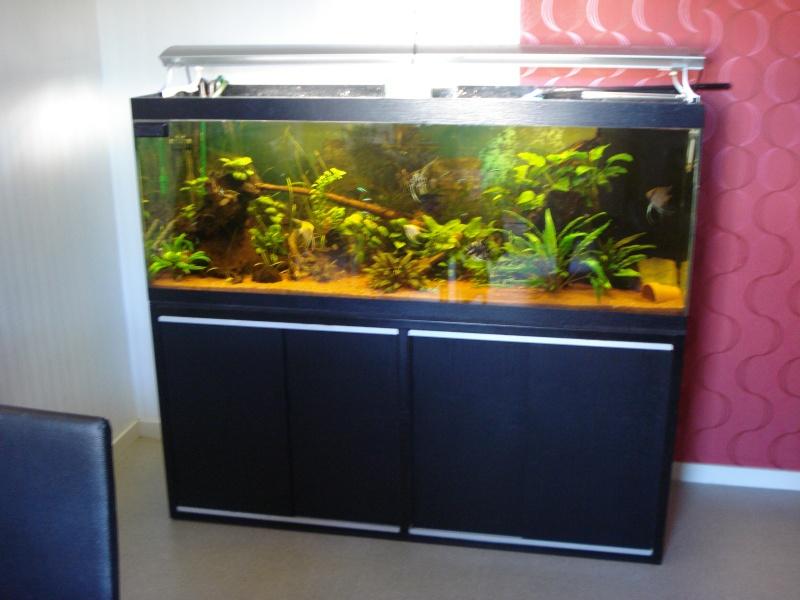 Vend aquarium 450l 38070 for Vend aquarium