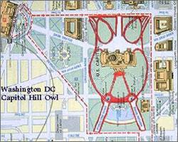 map310.jpg