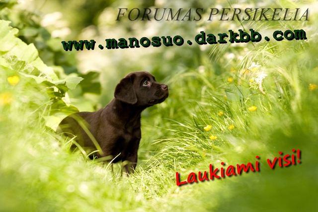 Forumas persikelia! www.manosuo.darkbb.com