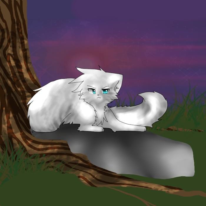 Apprentices Warrior Cats Untold Tales: Untold Tales (its A Computer Game Download = w=