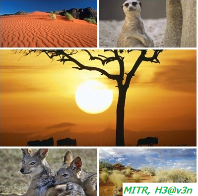 africa10.jpg