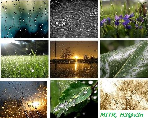 rainny10.jpg