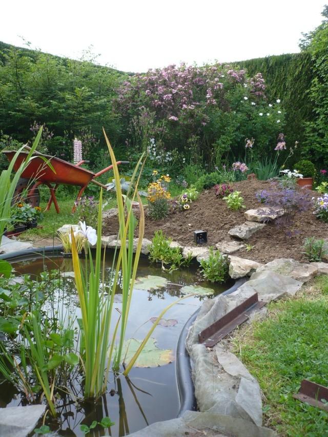 Le forum de passion bassin bassin de jardin baignade for Achat plante bassin
