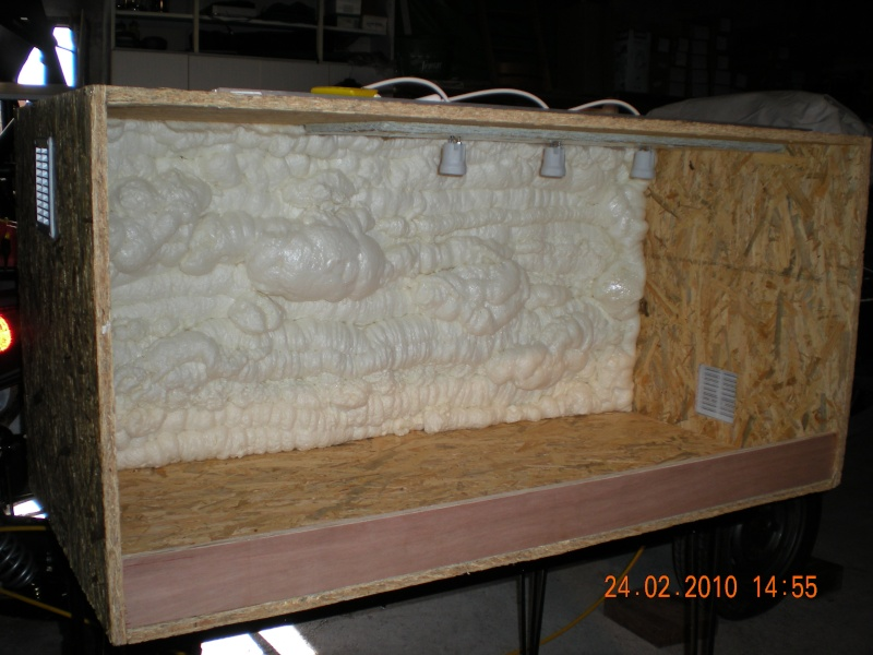 terrarium mousse expensive. Black Bedroom Furniture Sets. Home Design Ideas