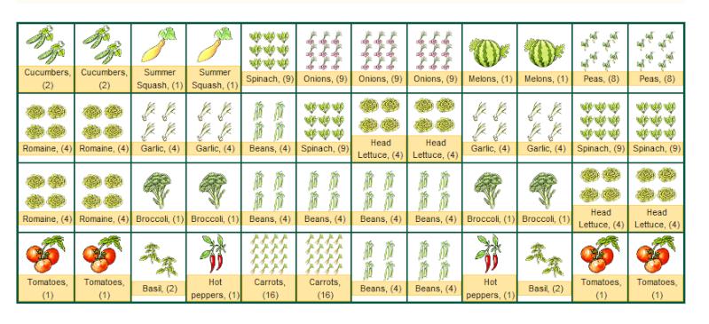 30 outstanding Vegetable Garden Design Companion Planting – Garden Companion Planting