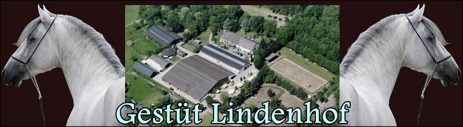 Reiterhof und Gestüt Lindenhof