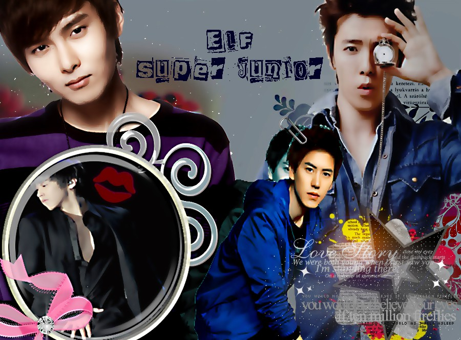 ELF SUPER JUNIOR